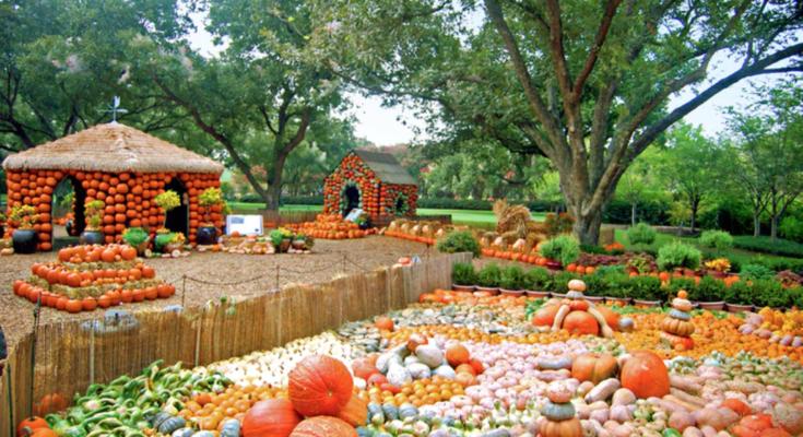 Photo Courtesy of The Dallas Arboretum and Botanical Garden