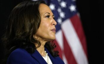 Kamala Harris/Photo Courtesy of AP Photo